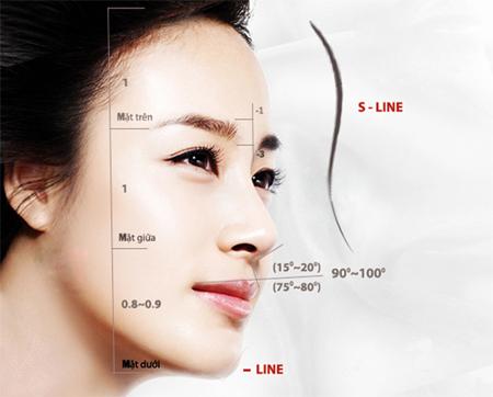 Cấu trúc của một chiếc mũi S line đúng chuẩn